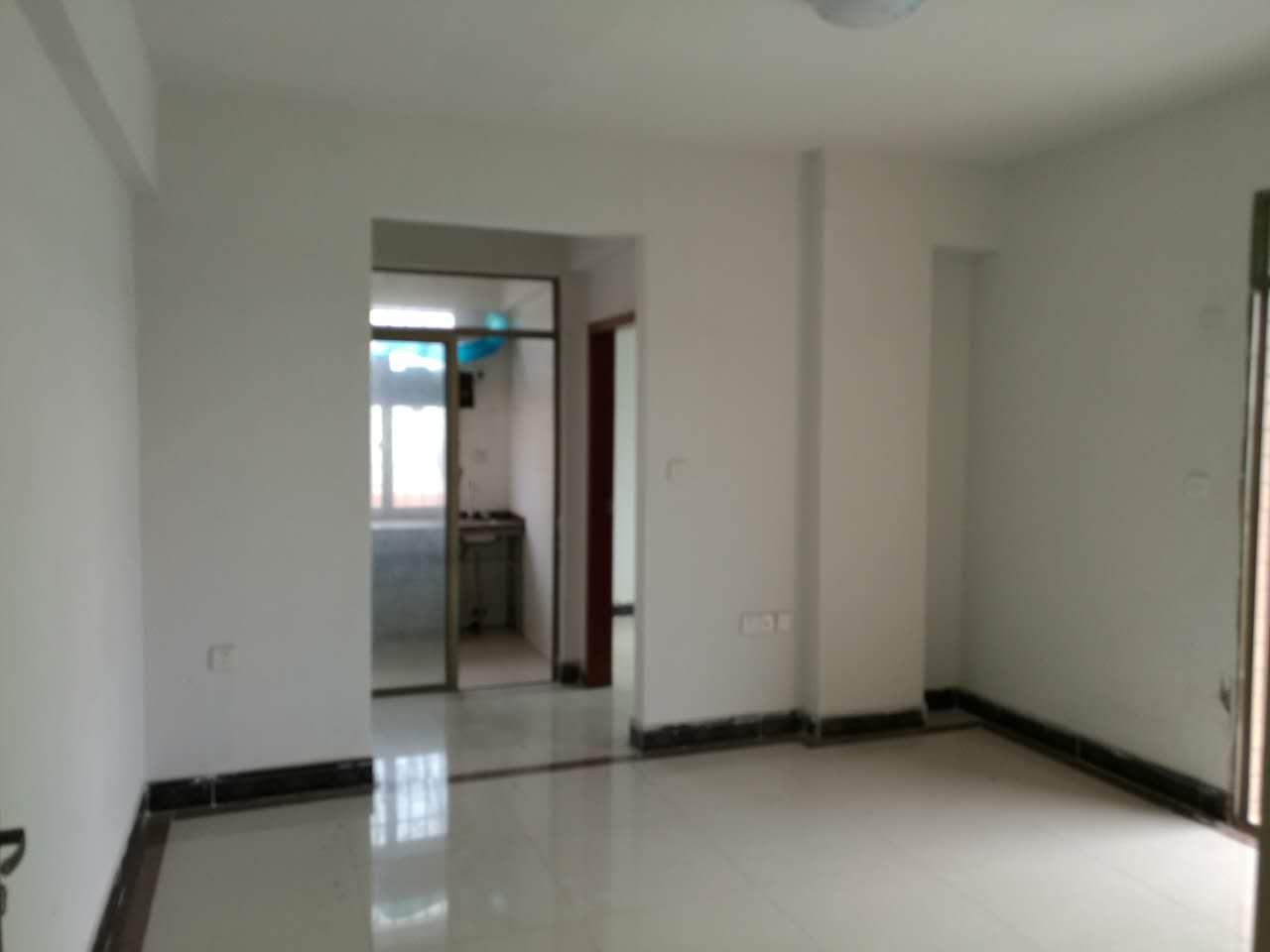 深圳公明小产权房19万起,公明马山头村带装修近地铁 三房二厅 第2张