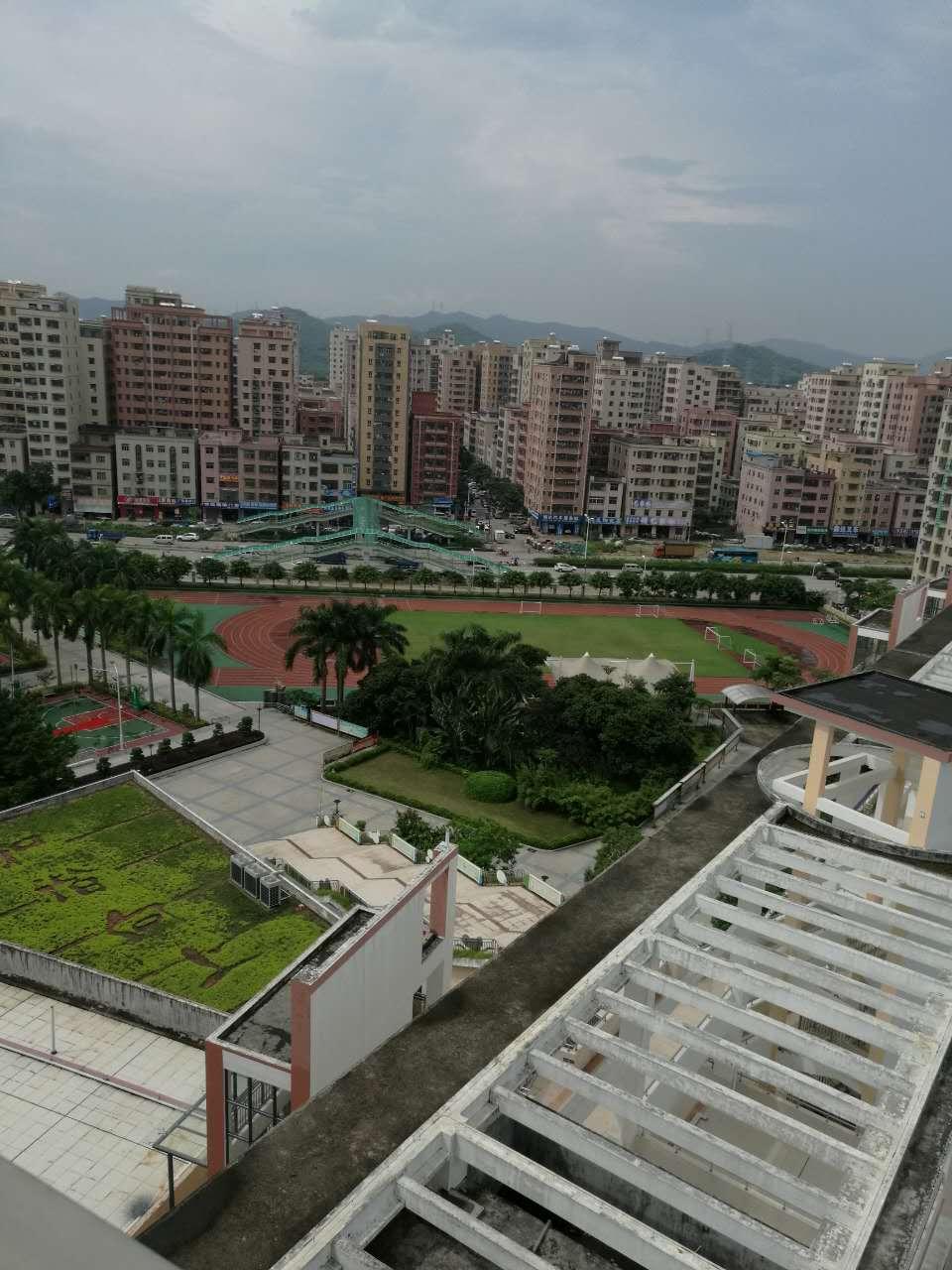 深圳公明楼村小产权房新开盘对外发售,3600元/㎡起 房价 新闻 跳蚤市场 二房二厅 第6张