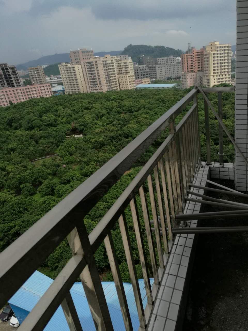 深圳公明楼村小产权房新开盘对外发售,3600元/㎡起 房价 新闻 跳蚤市场 二房二厅 第5张