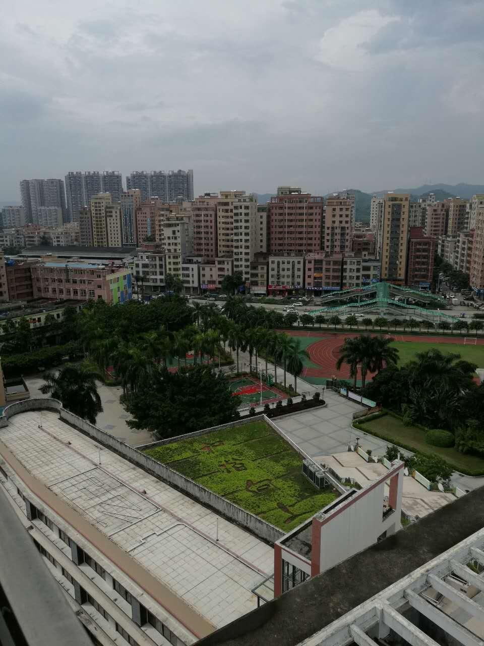 深圳公明楼村小产权房新开盘对外发售,3600元/㎡起 房价 新闻 跳蚤市场 二房二厅 第7张