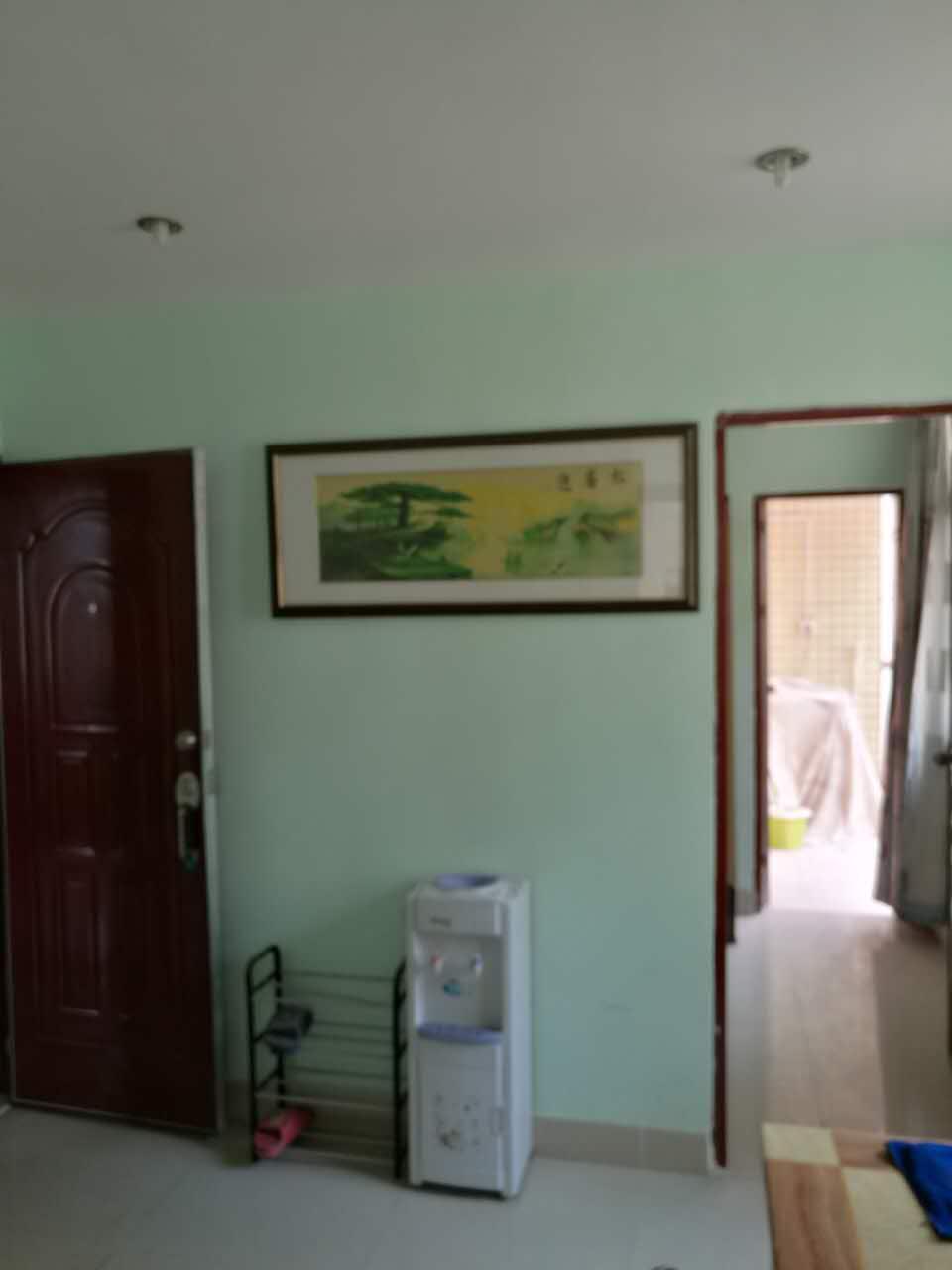 深圳小产权房单身公寓出售,公明上村全新装修 房地产 公寓 不动产 一房一厅 第9张