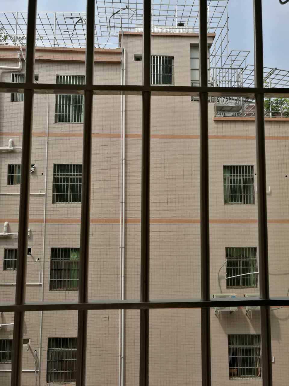 深圳小产权房单身公寓出售,公明上村全新装修 房地产 公寓 不动产 一房一厅 第8张