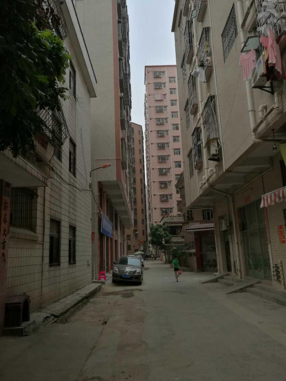 马山头小产权三房90平米43万,最便宜的笋盘 三房二厅 第10张